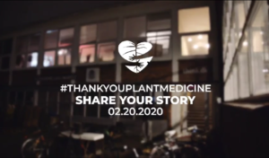 Ayahuasca, Thank You Plant Medicine 2020, TYPM, selvudvikling, spiritualitet, traumeforløsning, transformation